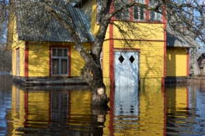 Flood and Water Damaged Home Repair